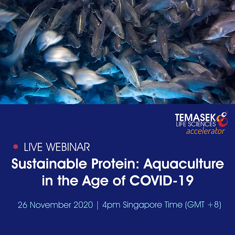 Aquaculture in the Age of COVID-19